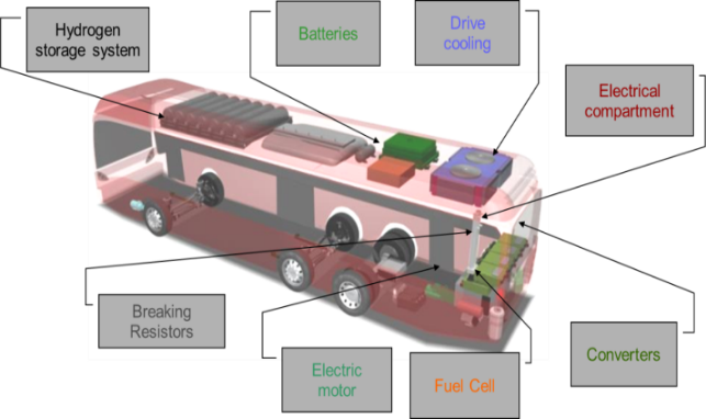 12  13 Meter Fuel Cell Electric Buses